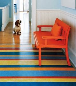 Please Visit Appletree Design Depot Or Call Us At 860 868 7410 And Let Help You Select The Linoleum Floor That Is Best For